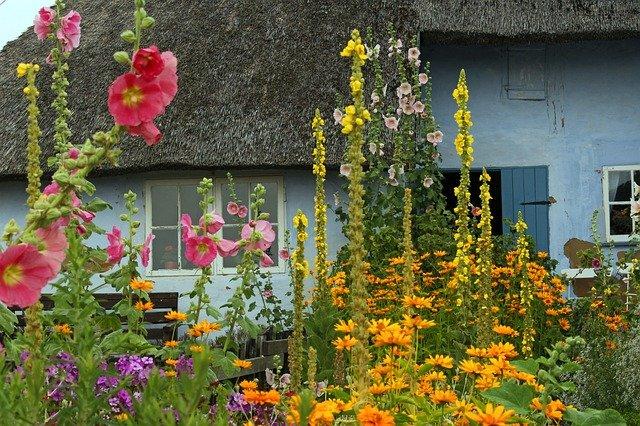 Dom z ogródkiem – jakie ogrodzenie wybrać?
